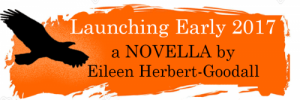 Book-Launch-Banner (reduced)